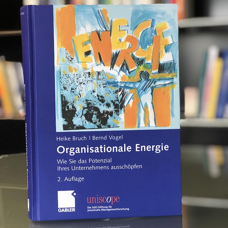 Organisationale Energie